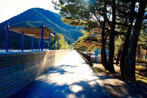 三木里海岸の整備された遊歩道と松林
