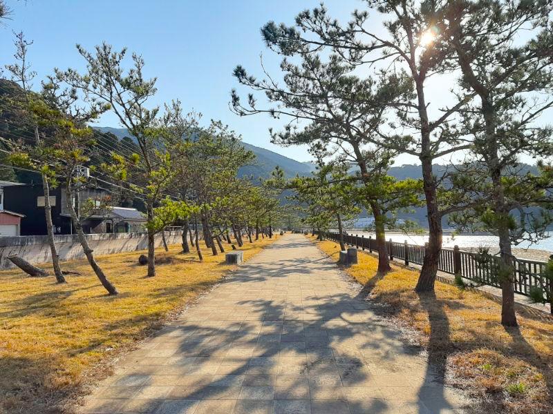 三木里海水浴場名柄海岸の松並木